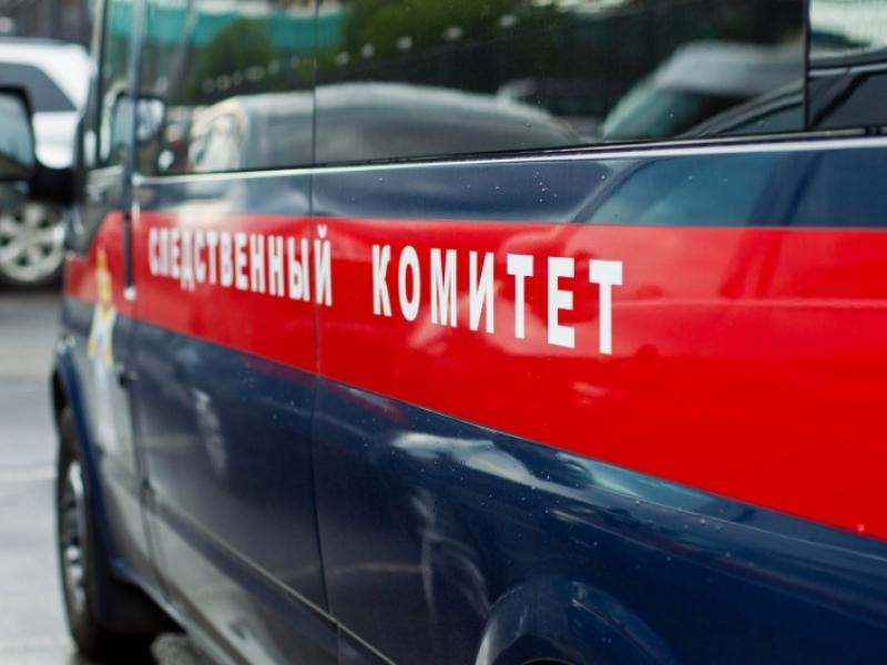 СК: Вубийстве новгородских пожилых людей подозреваются ребенок иеще один местный гражданин
