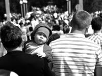 О крапиве, городском комфорте и рождаемости