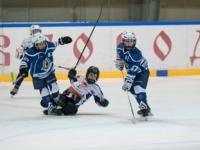Хоккейное побоище
