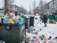 Новгородцы могут пожаловаться на стихийные свалки