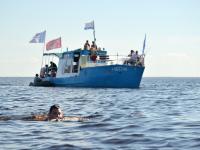 Новгородские моржи собираются снова переплыть Ильмень