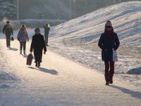 За год население Новгородской области сократилось более чем на 6 тысяч человек