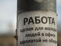 Власти Великого Новгорода намерены навести порядок на «сером» рынке труда