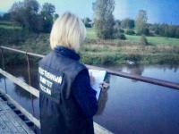Найдено тело пропавшего на Мсте подростка, следком ведет проверку