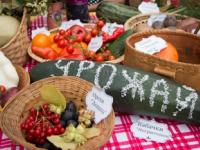 Овощи, цветы и отличное настроение